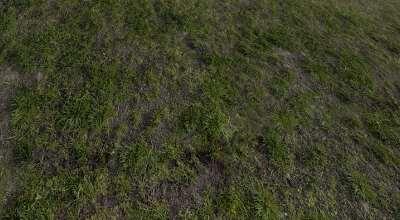 Skyrim — Сборка текстур травы | Skyrim моды