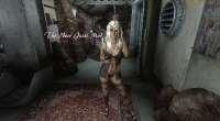 Fallout 3 — Джесси компаньон | Fallout 3 моды