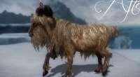 Skyrim — HD козлы | Skyrim моды