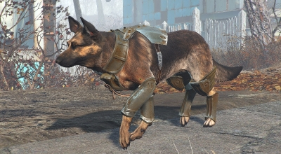Fallout 4 — Боевое снаряжения для собаки | Fallout 4 моды