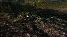 Skyrim — текстуры для грунта/земли и мостов