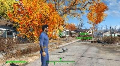 Fallout 4 — Спутник — кошка (Cat Follower) | Fallout 4 моды