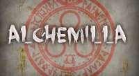 Alchemilla — погрузись в Silent Hill от первого лица