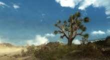 Fallout New Vegas — Улучшенная флора Пустоши | Fallout New Vegas моды