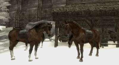 Oblivion — Новая модель для лошадей | Oblivion моды