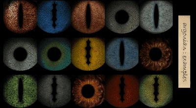 Skyrim — Улучшенные глаза | Skyrim моды