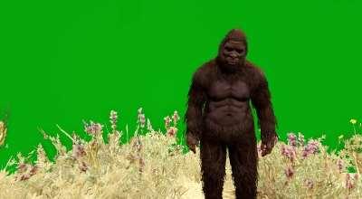 GTA 5 — «Зеленый экран» (Green Screen Mod) | GTA 5 моды